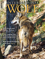 International Wolf Winter 2013 Magazine