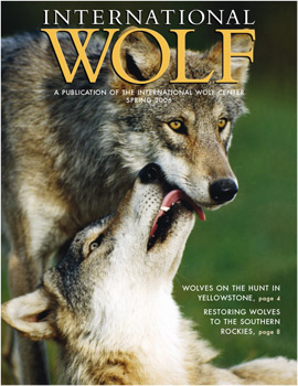 International Wolf Magazine - Spring 2006